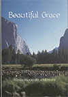 Meditations on the Epistle to the Galatians: Beautiful Grace by George Christopher Willis