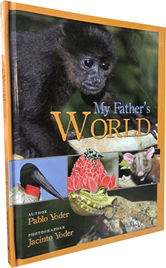 My Father's World by Pablo Yoder