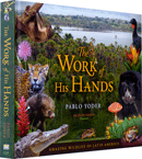 The Work of His Hands by Pablo Yoder