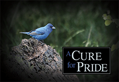 A Cure for Pride